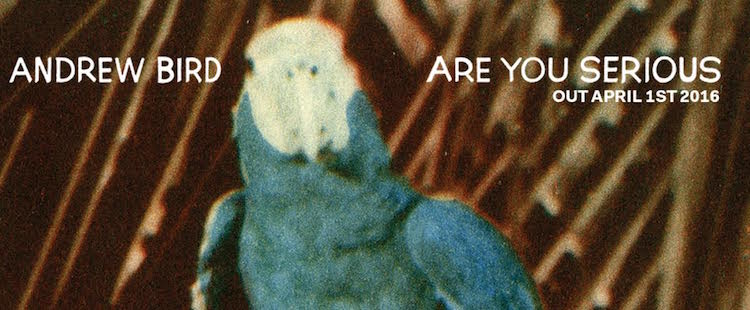 Andrew Bird - Are You Serious (album stream)